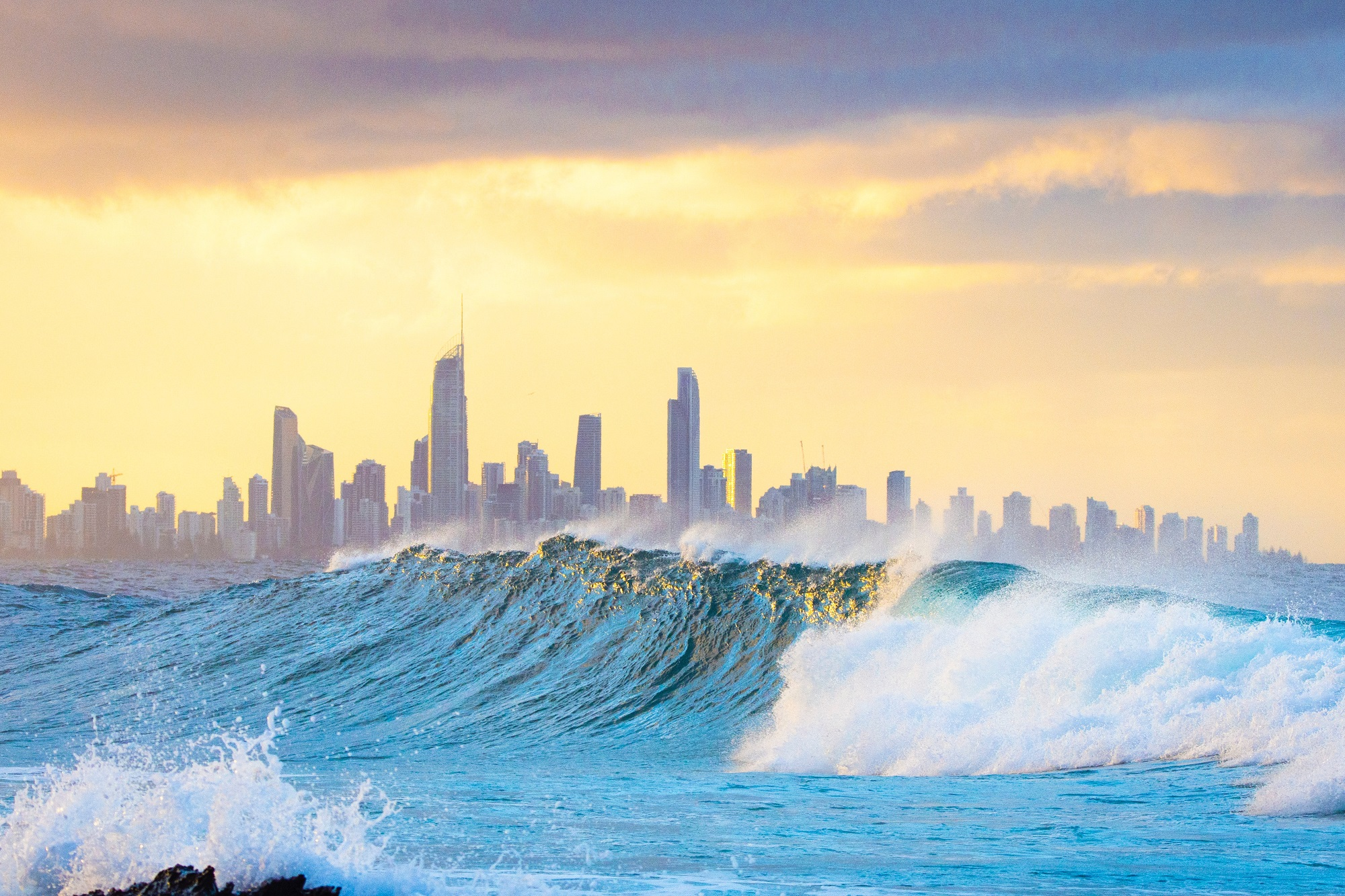 Why Study on the Gold Coast